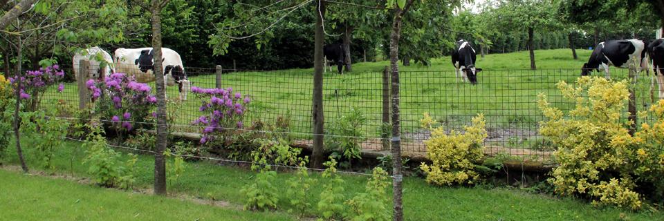 Jardin - Gîte du Manoir - Gîte de France 3 épis